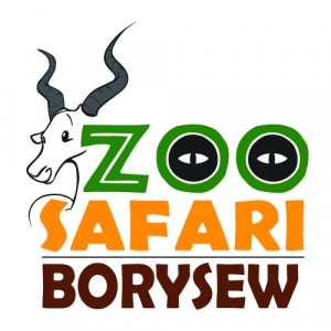 borysew